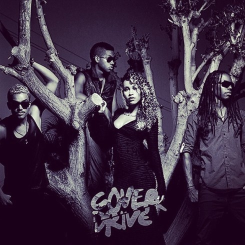 Cover Drive01